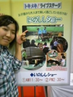 IN 静岡