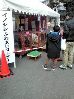 京都御王神社初日